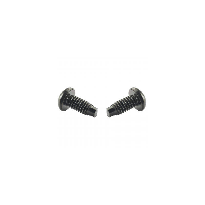 S1224-C, #12-24 Panduit Mounting Screws secure